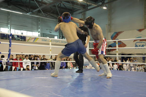 http://www.combatsd.ru/images/upload/view_391281_284293.jpg